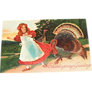 Thanksgiving Greetings: Turkey Pulling On Girl's Dress Postcard