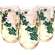 Green Ivy Design Clear Drinking Glass or Tumbler