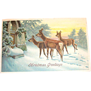 Vintage 1912 Christmas Greetings Scenic Deer Design