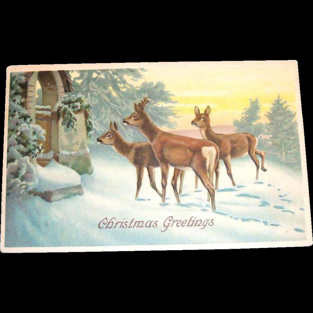 Vintage 1912 Christmas Greetings Scenic Deer Design