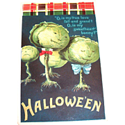 Ellen Clapsaddle Halloween Cabbage Heads Postcard