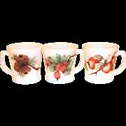 Fire King Fruit Design White D-Handle Mug