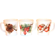 Fire King Fruit Design White D-Handle Mug