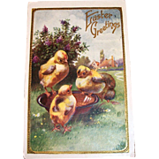 Easter Greetings Postcard (Chicks Eating Out Of Bowl)