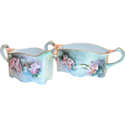 Vintage Hand Painted Floral design Porcelain Sugar & Creamer Set