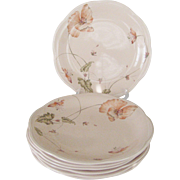 "Set of 7 Mikasa ""Oriental Poppy"" Dinner Plates"
