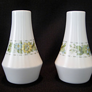 Noritake Springfield Salt and Pepper Shakers