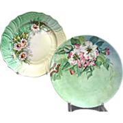 Thomas/Hutschenreuther Hand Painted Dessert Plates, Set of 2