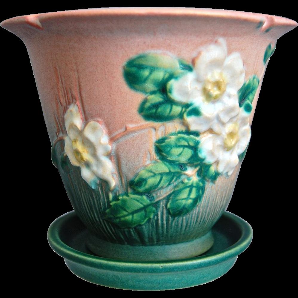 Roseville Pottery White Rose Flower Pot W/Saucer #654-5