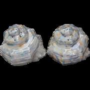 Royal Bayreuth Nautilus Shell Salt & Pepper Shakers, Pair, Blue Mark