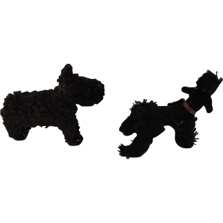 Two Miniature Black Dog Companions