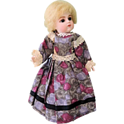 Sweet 2 Piece Floral Cotton Dress for All Bisque Small Dolls