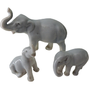 Sweet German Miniature Elephant Family