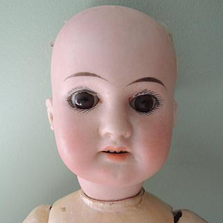 German Thirteen Inch AM 1894 DEP Doll Fixer Upper