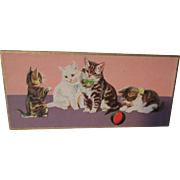 Colorful Old Box with Darling Playful Kittens and Old Childs Socks