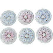 OYSTER Plates Set of 6 Blue Pink