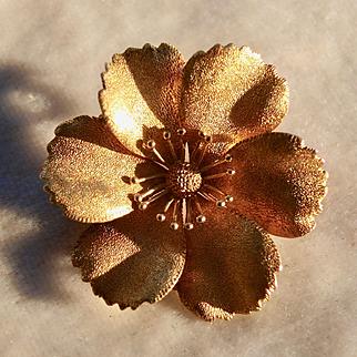 Victorian Buttercup Brooch / Pendant in 14k gold
