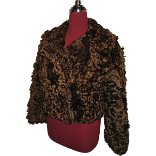 Curly Brown Scottish Lamb jacket / waist length - beautiful and rare fur