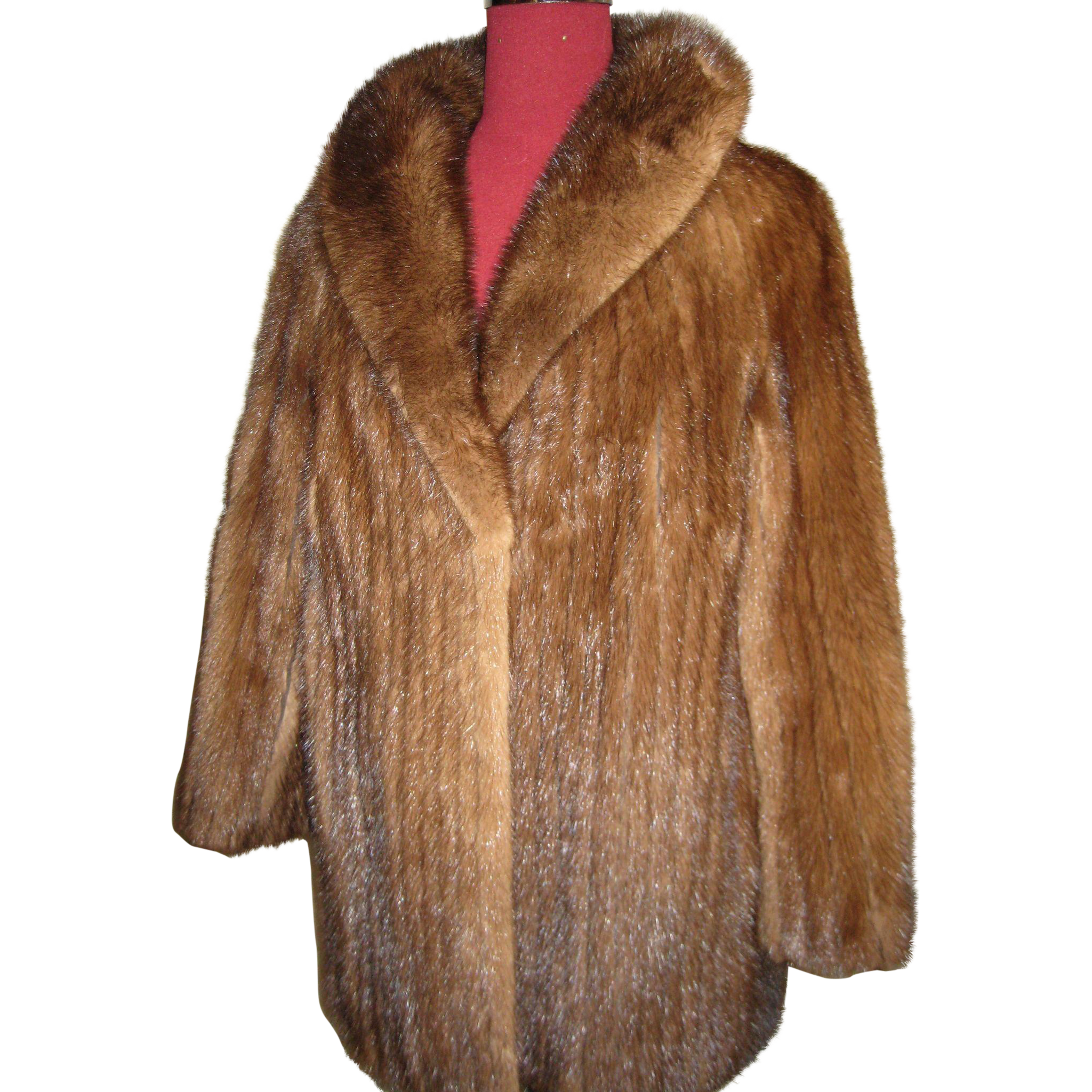 Superb Demi-Buff Mink strips Fur Jacket w large collar