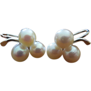 14K White Gold Triple Pearl Earrings - Screw On Vintage