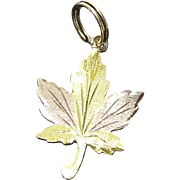 10K Gold Maple Leaf Charm Signed - Tri Color Gold!