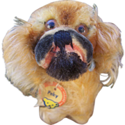 Smallest Size Steiff Peky Pekingese Dog, 1959 to 1964, Steiff Button and Chest Tag