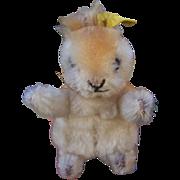 Steiff Possy Squirrel, 1967 to 1970, Steiff Button