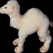 Steiff  Dromedary Camel, 1958 to 1964, Steiff Chest Tag