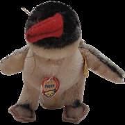 Steiff Peggy Penguin,1968 to 1972, Steiff Button and Steiff Chest Tag