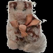 Cute Steiff Woolen Pussy Cat, 1959 to 1963, No Id's