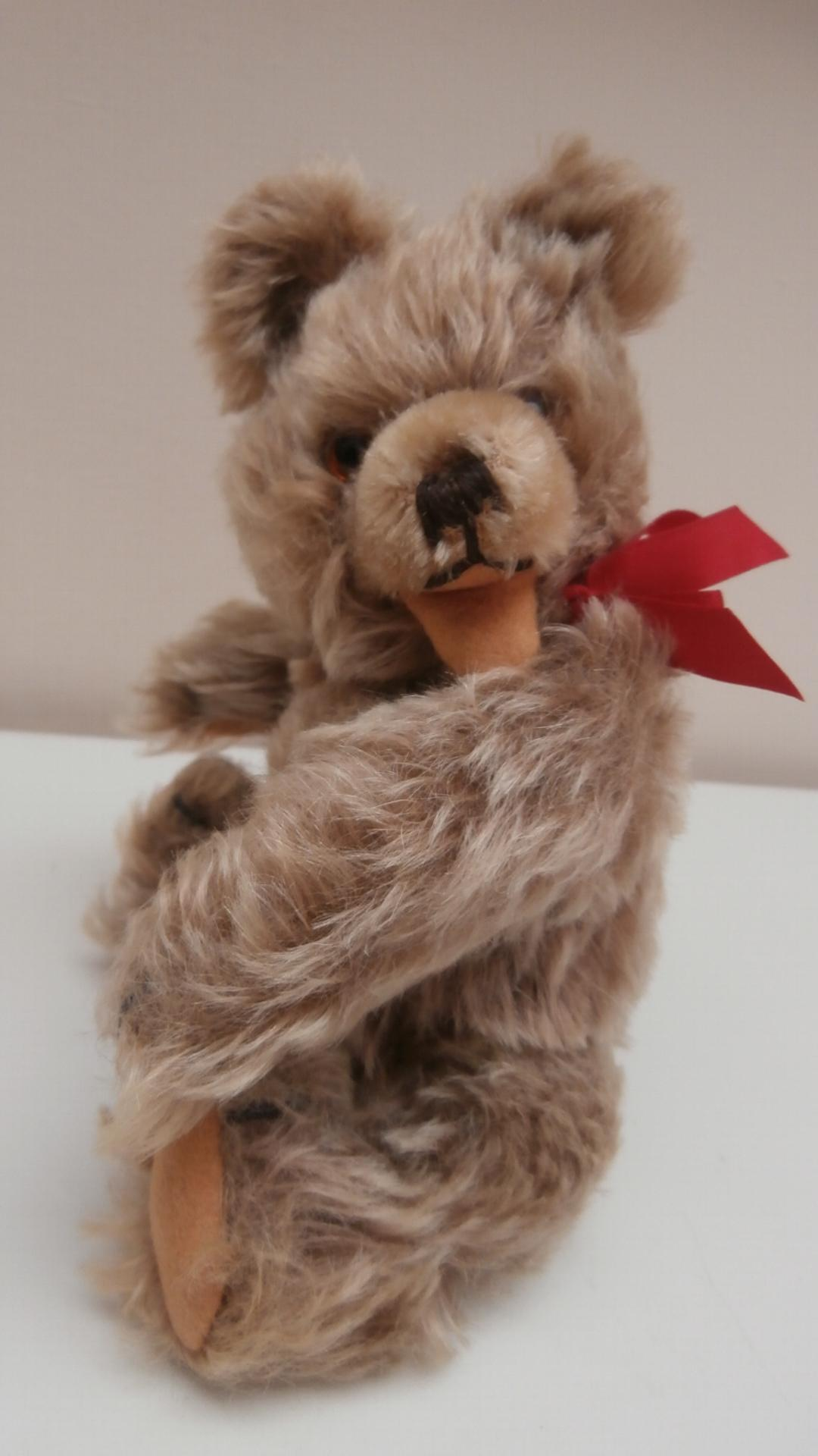 Tommy, Sweet Vintage Hermann Zotty Type Teddy Bear, No Id's