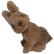 Steiff Sonny Rabbit, 1964 to 1965, No Id's