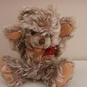 Zotty, Steiff Teddy Bear, 1951 to 1960, No Id's