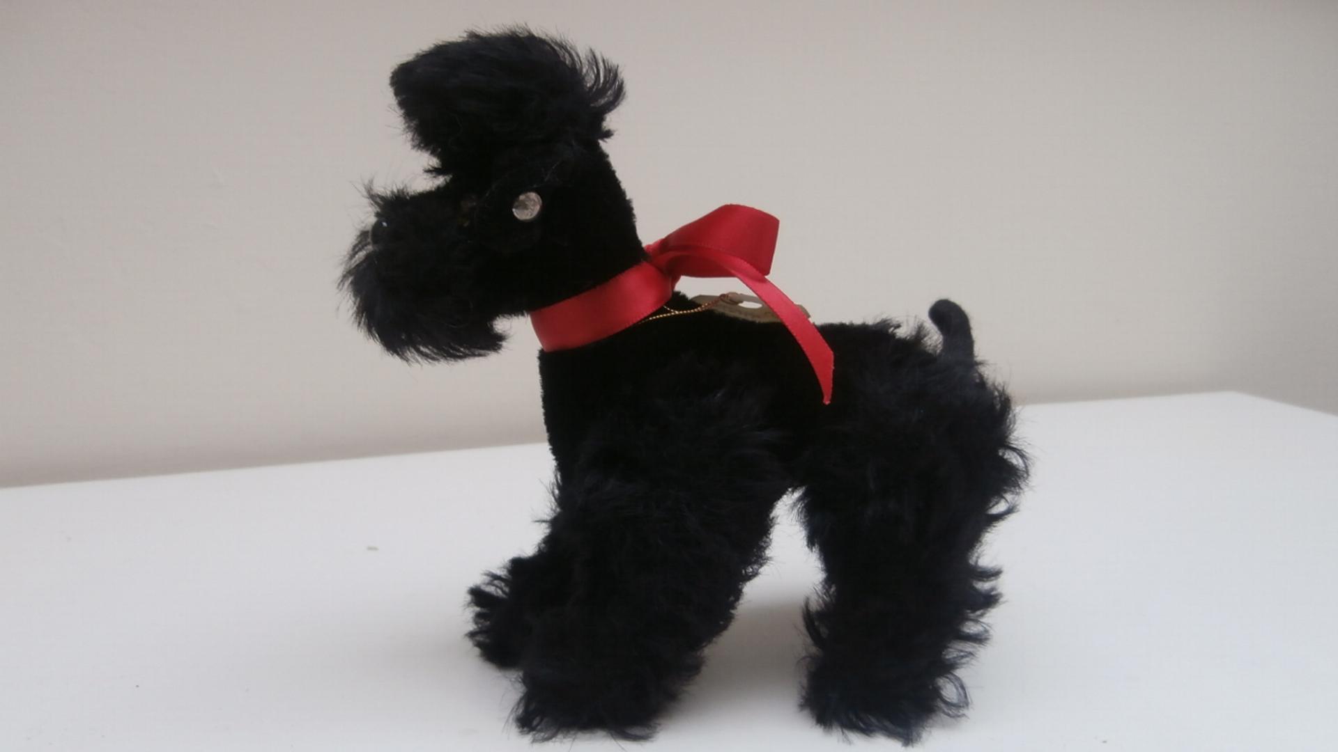 Steiff Black Snobby Poodle, 1968 to 1972, Steiff Button