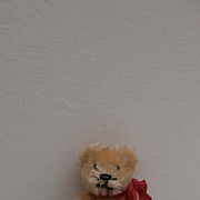 Miniature Schuco  Vintage Teddy Bear