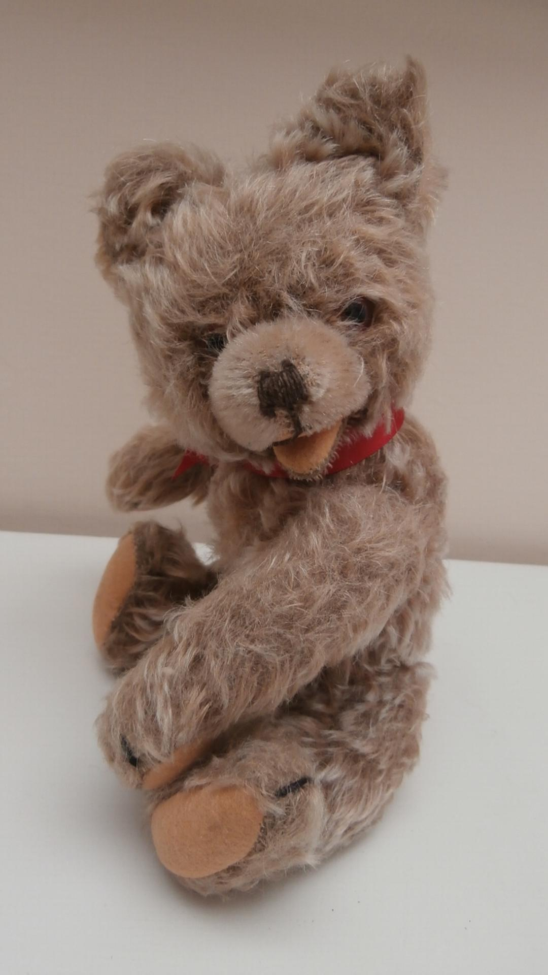 Hans. Hermann Zotty Type Teddy Bear, No Id's