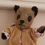 Molly, Poor Old Chilten Panda Teddy Bear