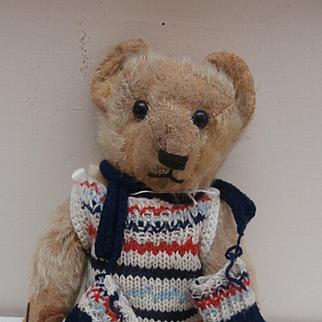 Dear Old George Early English Teddy Beat
