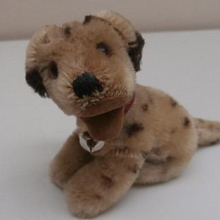 Steiff Dally Dalmation Dog 1959 to 1964, Steiff Button, A/F