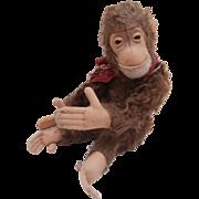 Darling Steiff Jocko Monkey, 1958 to 1964, No Id's