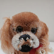 Steiff Peky, Pekingese Dog, 1968 to 1972, Steiff Button