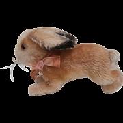 Steiff Hoppy Rabbit , 1959 to 1964, No Steiff Button