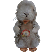 Steiff  Piff Marmot , Button and Chest Tag, 1970 to 1977.