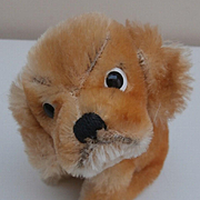 Steiff Revue Susi, Cocker Spaniel, 1965 to 1967, Steiff Button