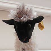 Steiff Snucki Mountain Sheep, 1959 to 1967, Steiff Button