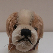 Rare Steiff St.Bernard Dog, 1953 to 1957, Steiff Button