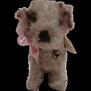 Steiff Molly Puppy, 1966 to 1969, Steiff Button