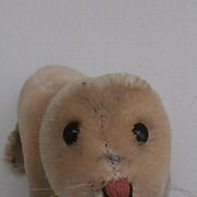 Steiff Smaller Robby, Sea Lion  1965 to 1968, Steiff Button