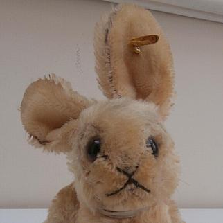 Steiff Changeable Rabbit, 1959 to 1964, Steiff Button and Steiff Chest Label.