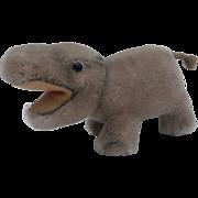 Steiff Mocki  Hippopotamus, 1954 to 1964, No Id's